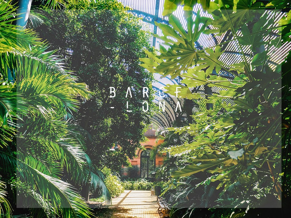 barcelona laroux
