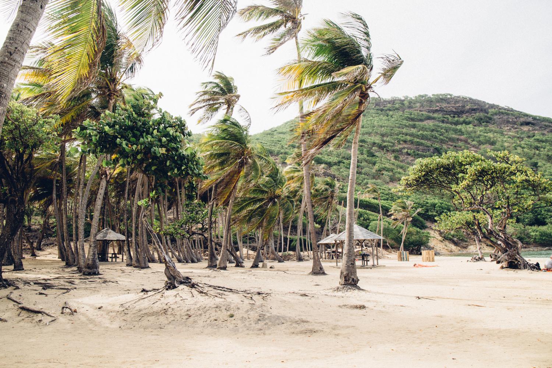 plage de pompierre, les Saintes, Guadeloupe
