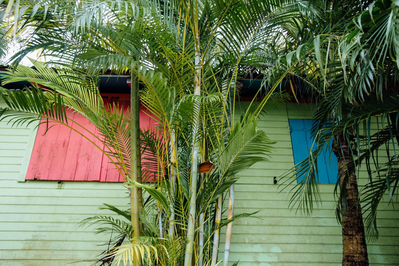 Tendacayou - nuit insolite Guadeloupe