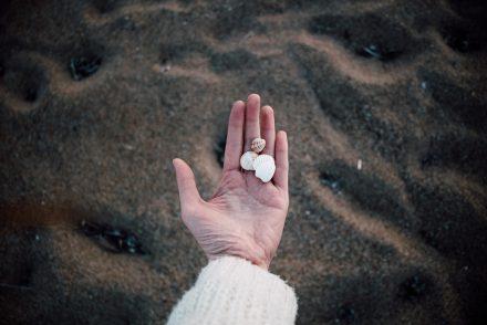 Costa Navarino - plage coquillages