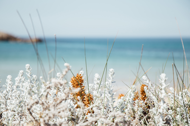 Voidokilia beach - Greece