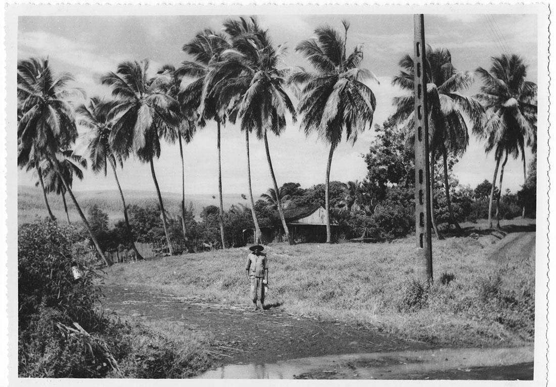 Martinique, argentique