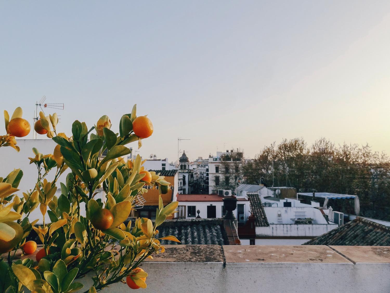 andalucia-hellolaroux-airbnb6