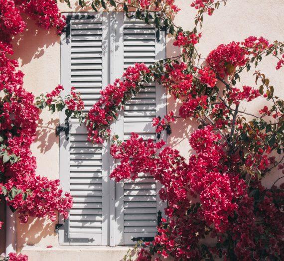 Villages de France — Un week-end en amoureux à Hyères