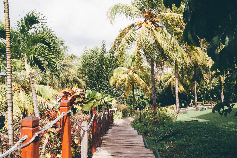 Auberge de la vieille tour, Guadeloupe