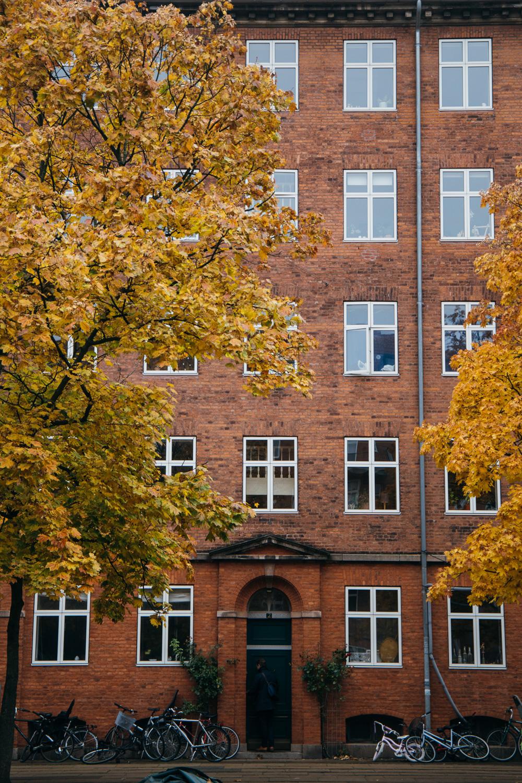 visiter Copenhague à l'automne