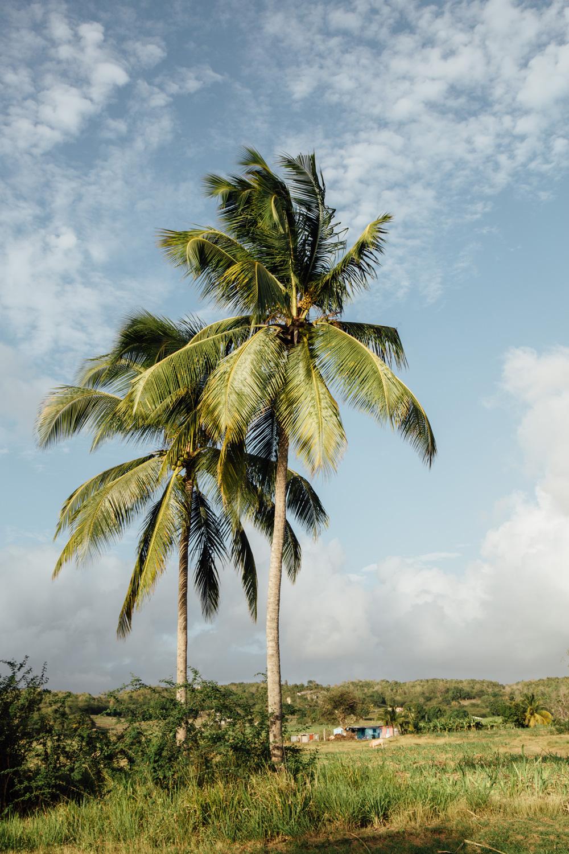 que voir dans l'archipel des îles de Guadeloupe