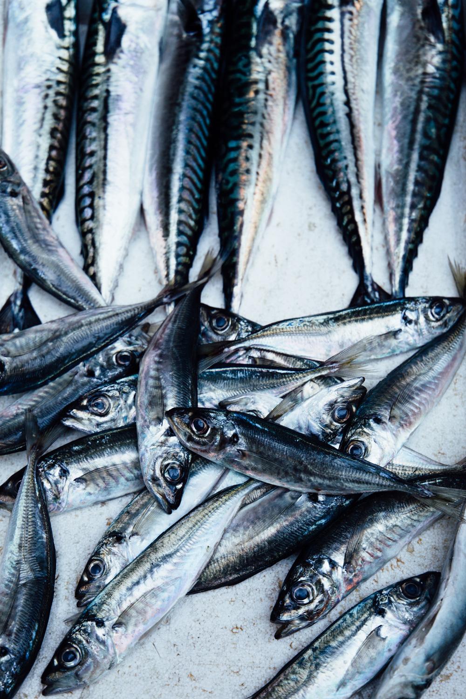 que manger portugal - marché de porto