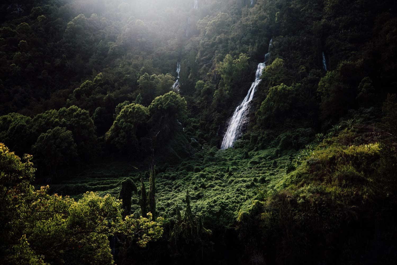 les plus belles cascades La Réunion