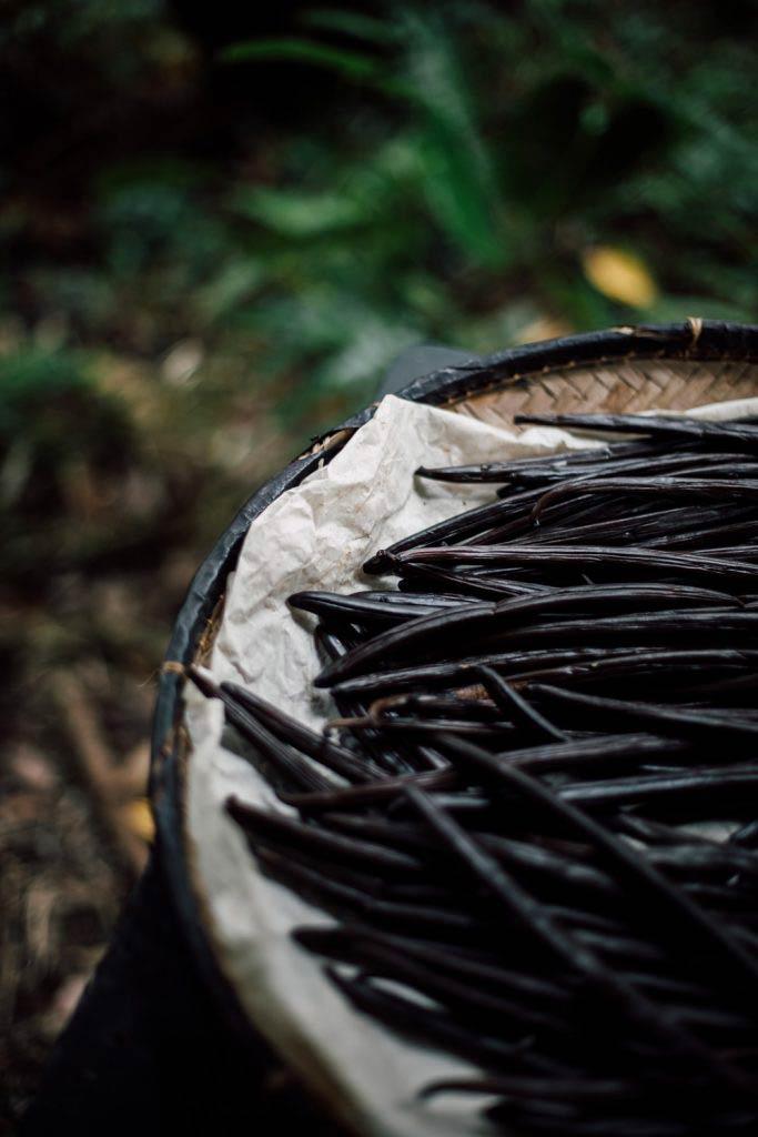 visiter une plantation de vanille à La Réunion