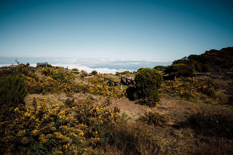 voyage La Réunion belvédère du Maïdo