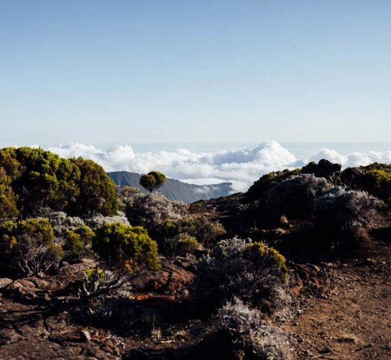 Que faire à La Réunion : nos  10 incontournables de l'île intense