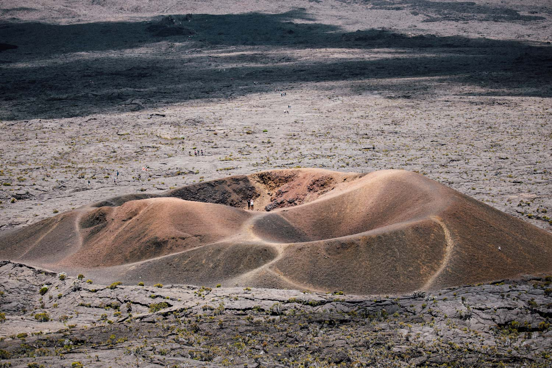 formica leo volcan La Réunion