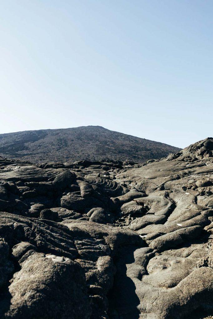 végétation fertile volcan