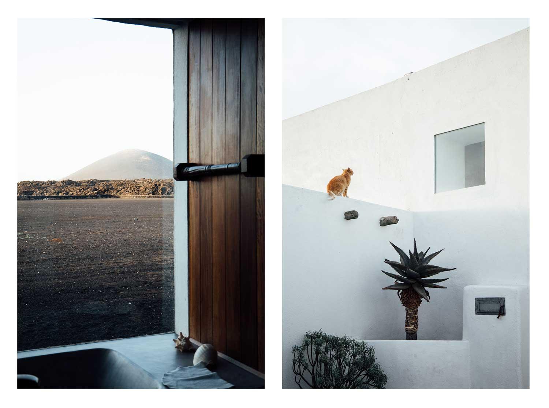 moodboard Canary Island