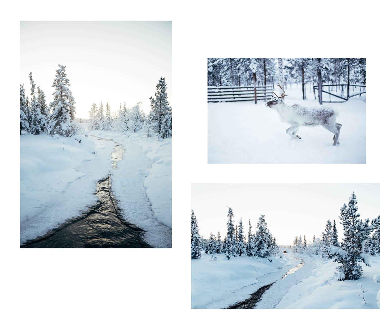 La Laponie en photos