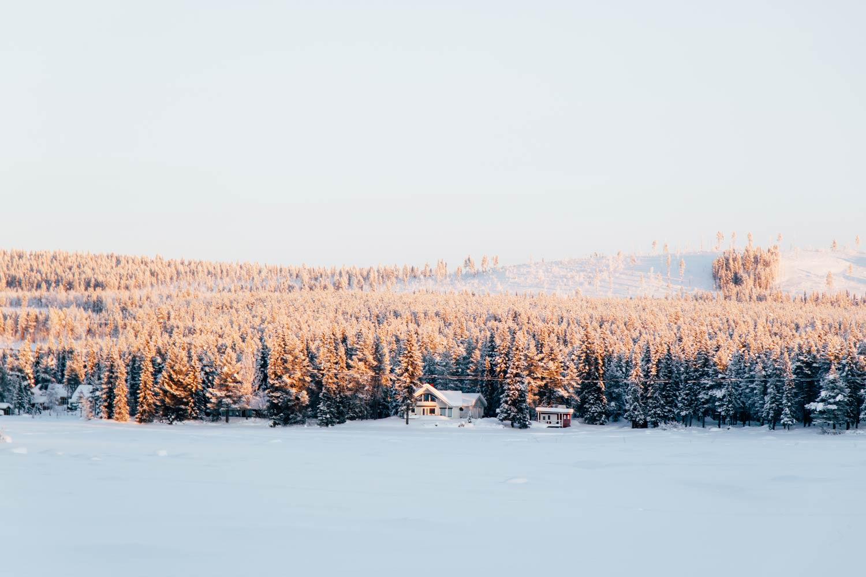 paysages enneigés de Laponie