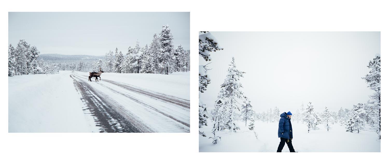 voyager en laponie suédoise