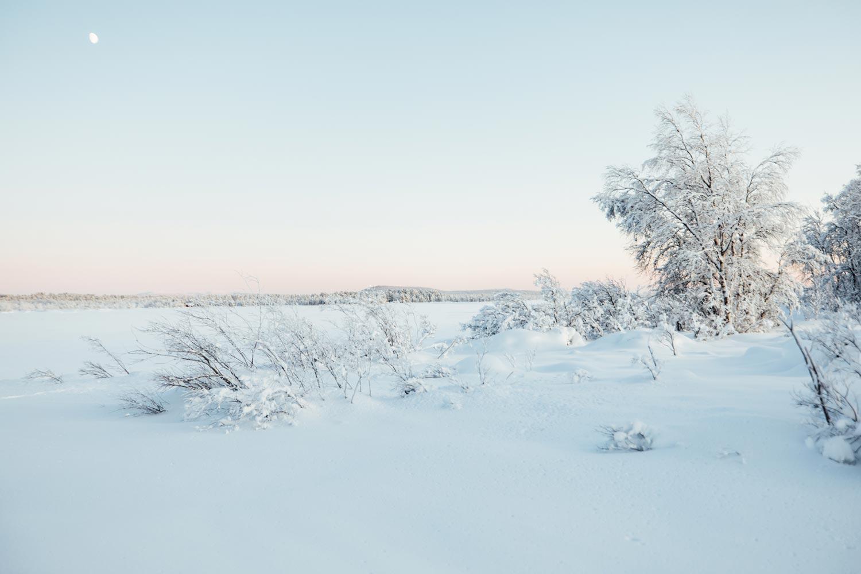 voyager en Laponie
