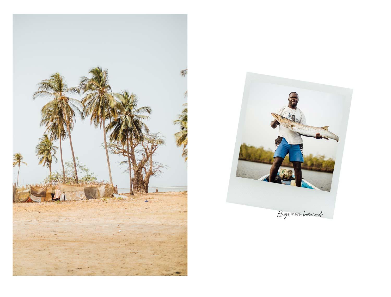 carte postale Siné Saloum