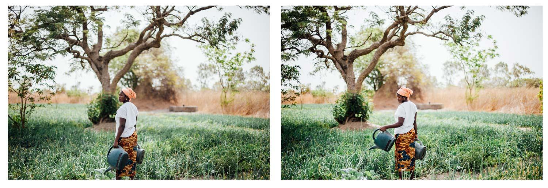horticulture maraîchère Siné Saloum