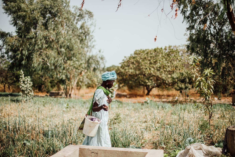 femme du Sénégal portrait
