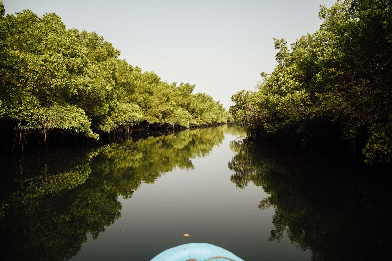 les bras de mer du delta du Siné Saloum