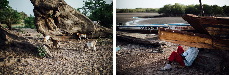 missirah baobab pêcheur