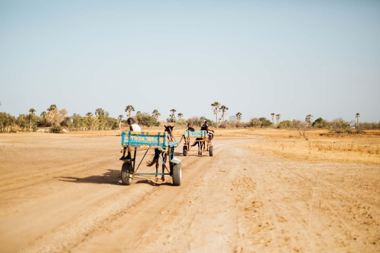 Charrette Senegal