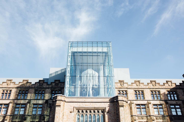 Ottawa musée de la nature