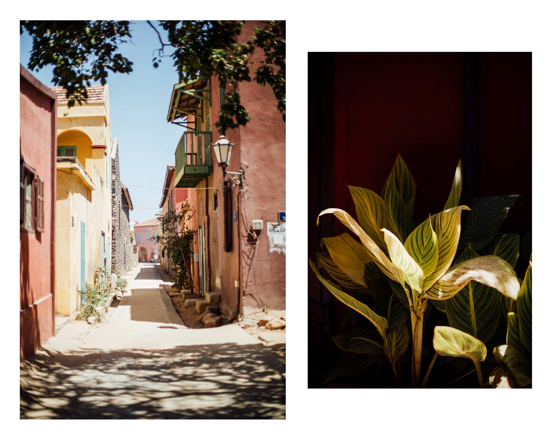 visiter Dakar, que faire ? Que voir ?