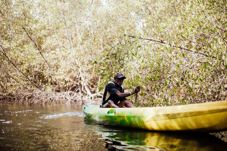 faire du kayak dans la mangrove