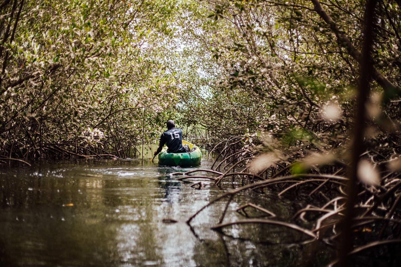 mangrove Siné Saloum kayak