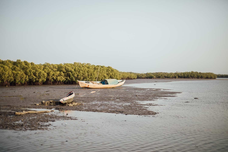pourquoi voyager au Senegal cette année ?