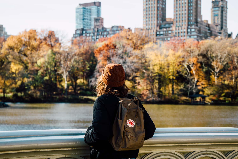 voir central parc en automne