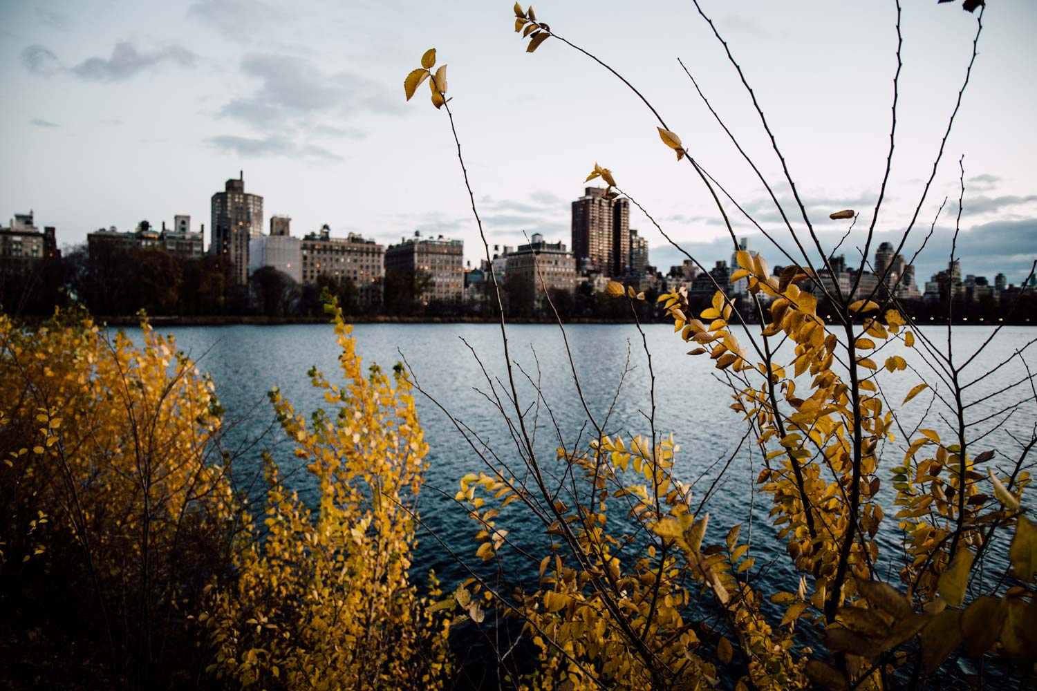 que faire a new york en automne ?