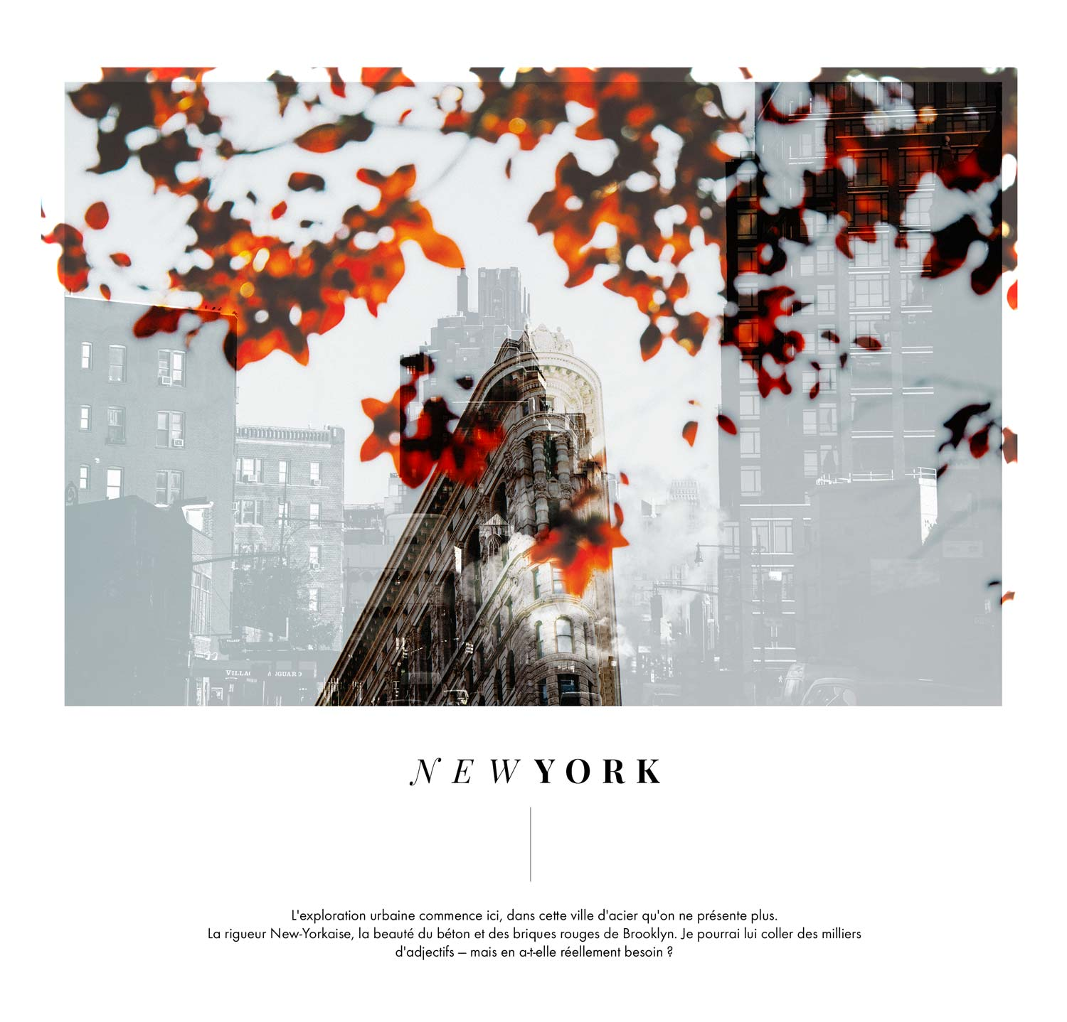 que faire a new york blog voyage