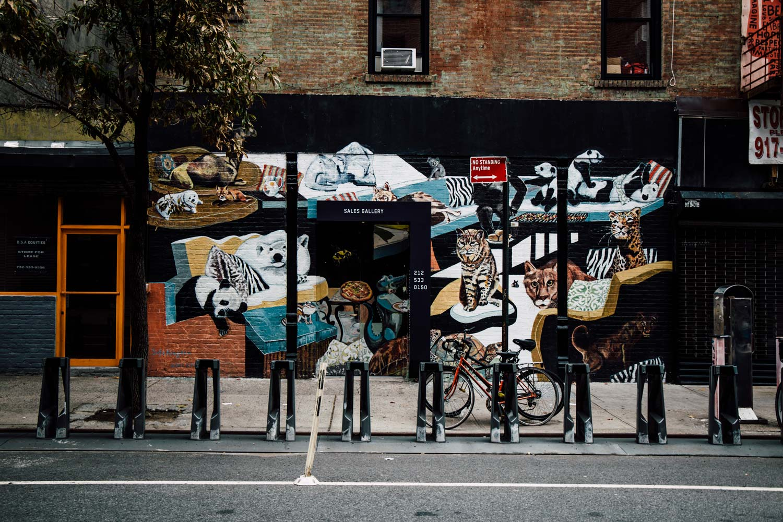 photographier le street art à New-York