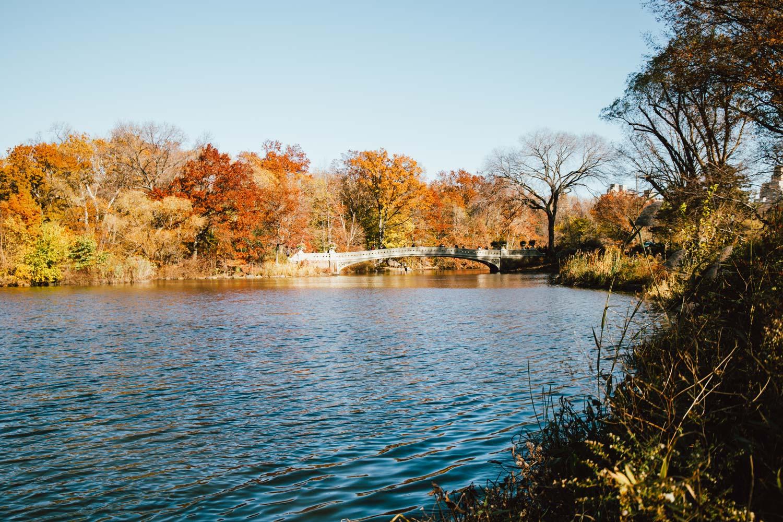 visiter new york à l'automne blog voyage