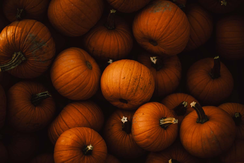 citrouilles photo automne au Canada