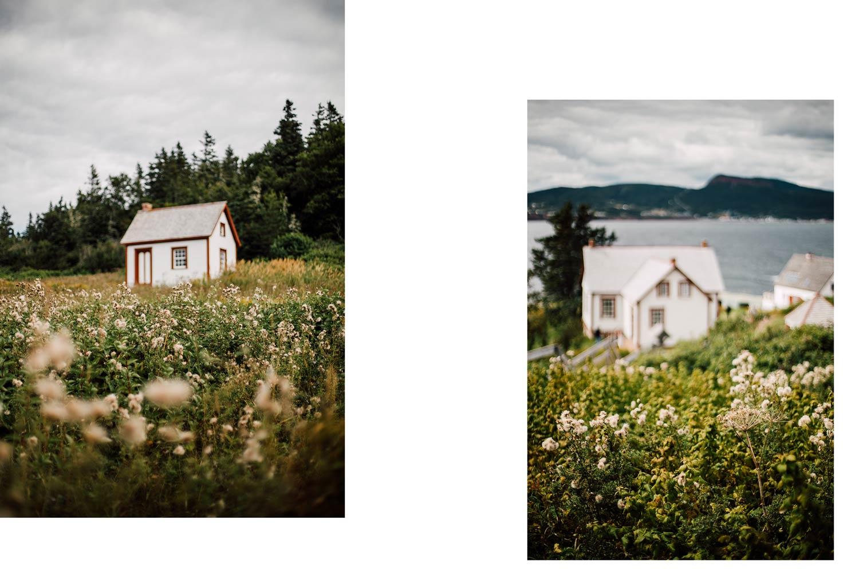 ile bonaventure road trip en Gaspésie