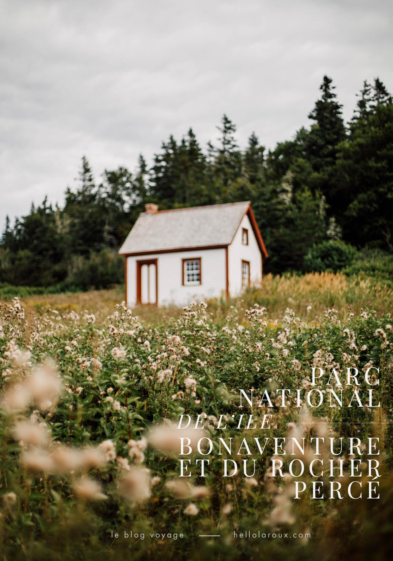 parc national de l'ile bonaventure-et-du-rocher-percé