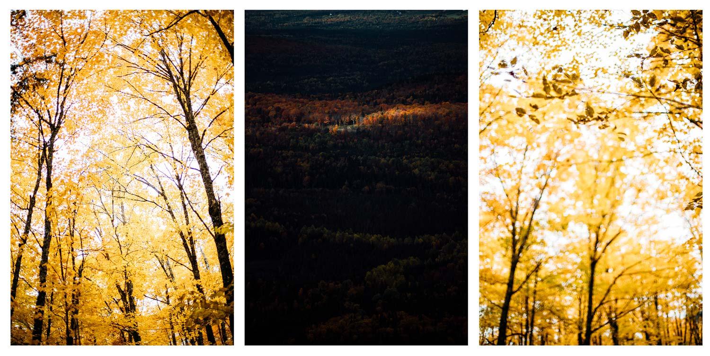parc régional des Appalaches automne