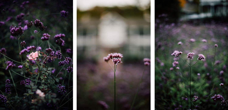 triptyque floral Lotbinière