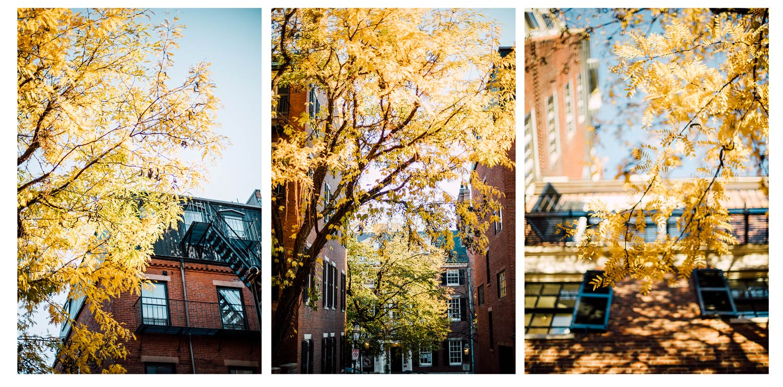 l'automne à Boston, Beacon hill