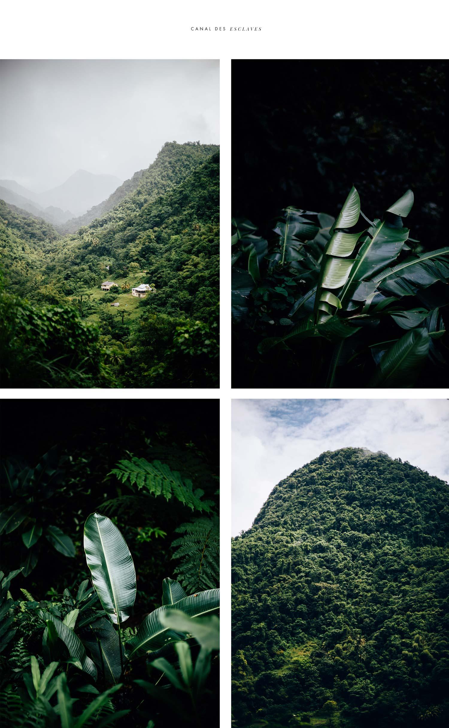 rando canal des esclaves Martinique