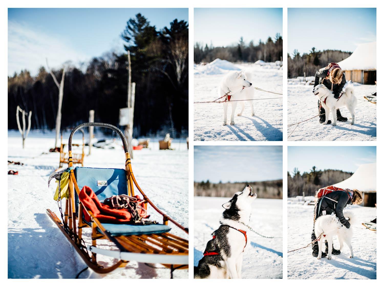 où faire du traineau à chien au Québec