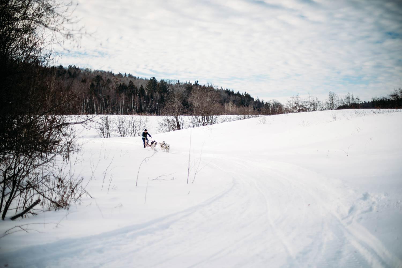 kinadapt traineau à chien Québec