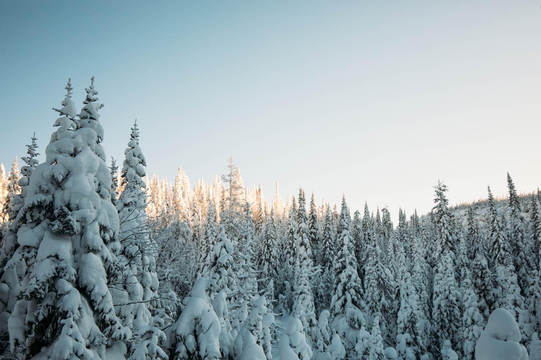 les plus beaux paysages du Québec en hiver