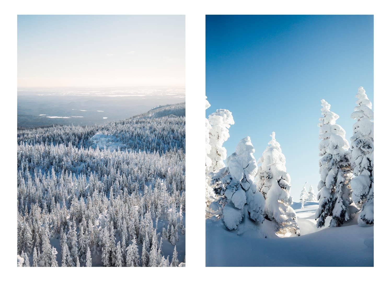randonnée d'hiver à faire au Québec
